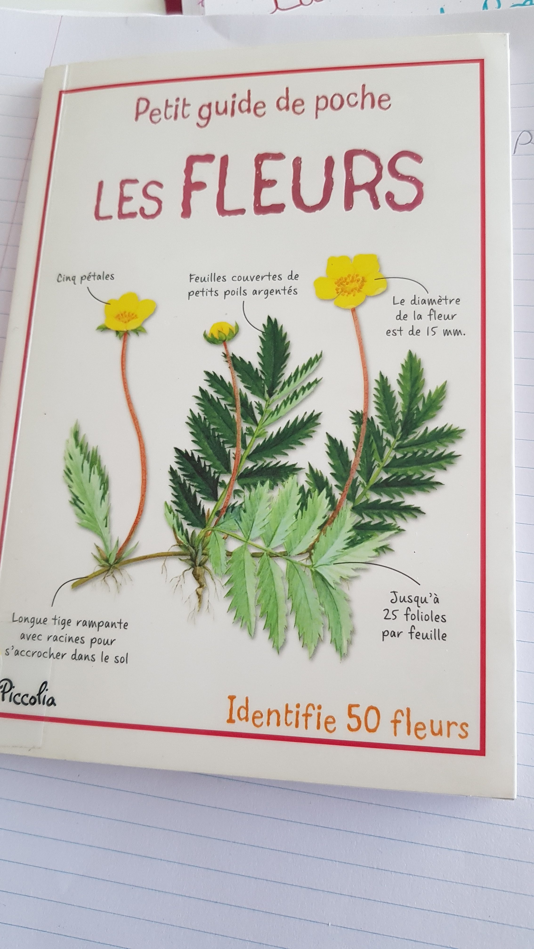 guide fleurs enfant livre